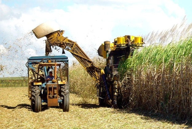 Government will launch program to double biofuel production