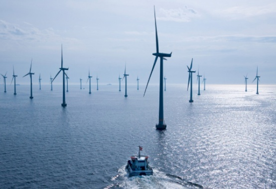 Ibama launches standard term of reference for offshore wind energy complexes